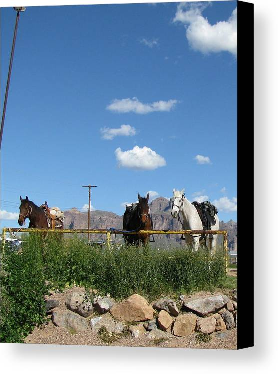 Landscape Canvas Print featuring the photograph Blue Sky In Arizona by Gloria Byler
