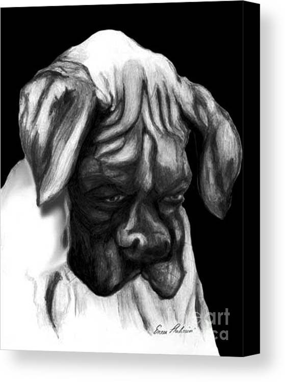 Animals Canvas Print featuring the painting Boxer Puppy by Portraits By NC