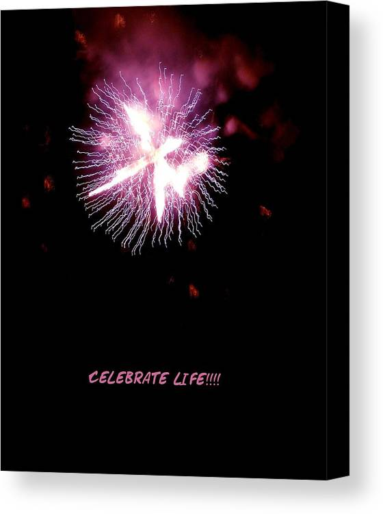 Fireworks Canvas Print featuring the photograph Celebrate Life by Kendall Eutemey
