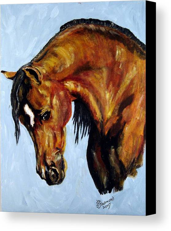 Arabian Horse Painting Canvas Print featuring the painting Graceful Arabian by BJ Redmond