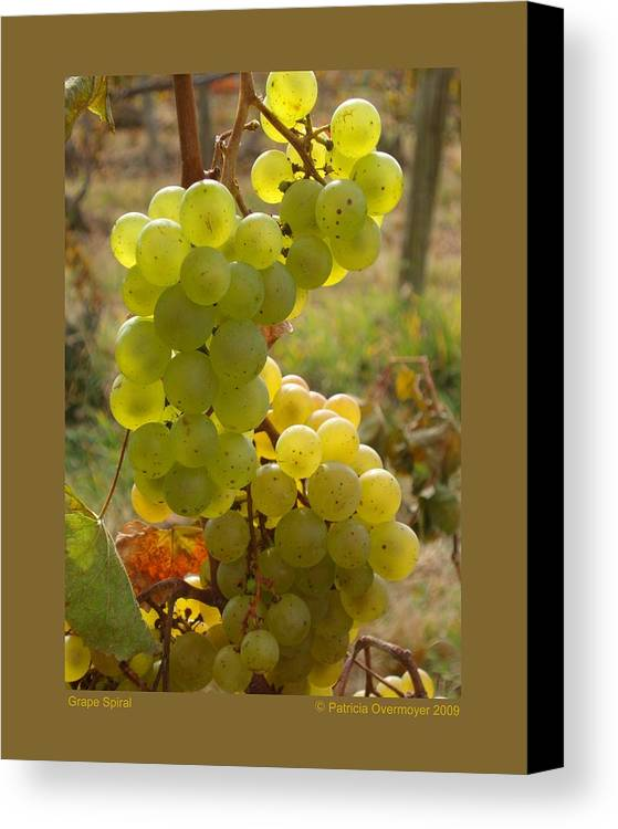 Grapes Canvas Print featuring the photograph Grape Spiral by Patricia Overmoyer