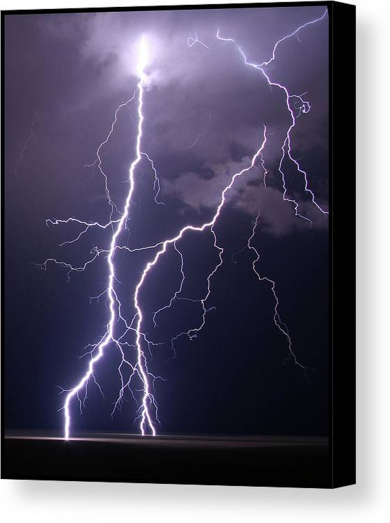 Vertical Canvas Print featuring the photograph High Voltage! by Pat Gaines