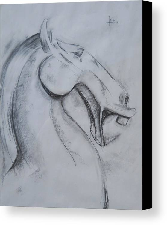 Horse Canvas Print featuring the drawing Horse Face by Victor Amor
