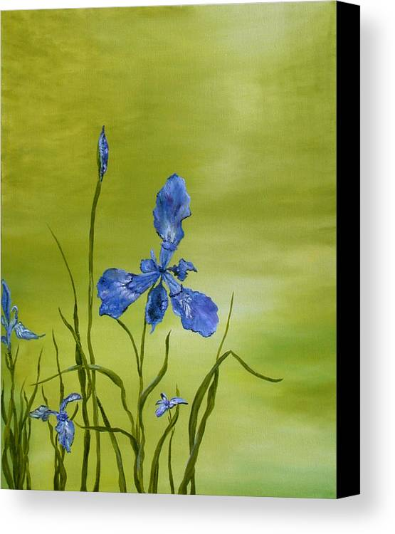 Floral Canvas Print featuring the painting Mountain Iris by SheRok Williams
