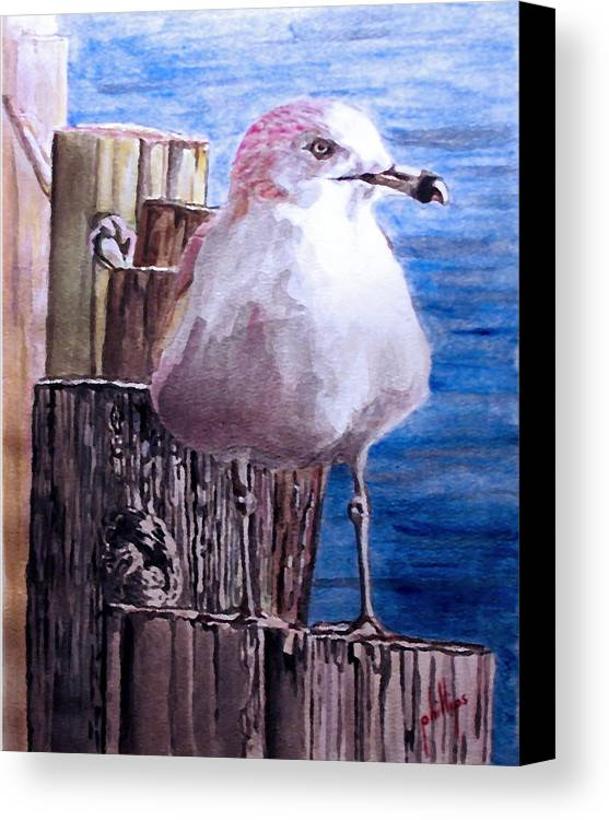 Seagull Canvas Print featuring the painting My Gull by Jim Phillips