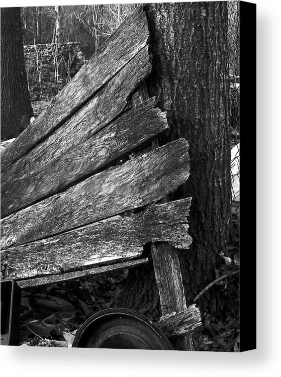 Ansel Adams Canvas Print featuring the photograph Nextdoorolddoor by Curtis J Neeley Jr