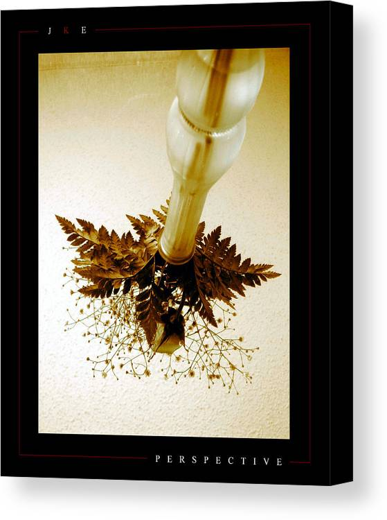 Flower Canvas Print featuring the photograph Perspective by Jonathan Ellis Keys