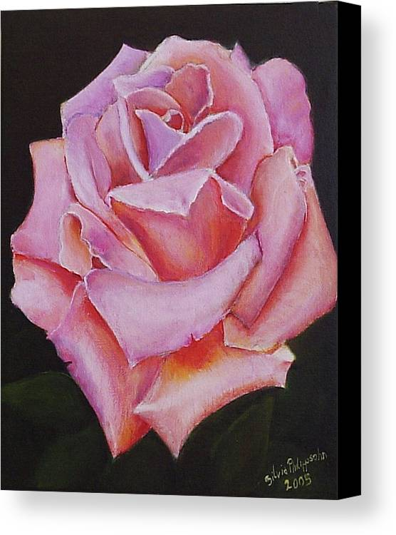 Rose Canvas Print featuring the painting Pink Rose by Silvia Philippsohn