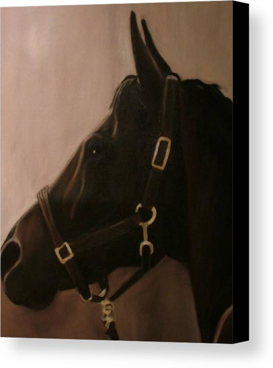 Horse Canvas Print featuring the painting Pocketchange by Donna Thomas