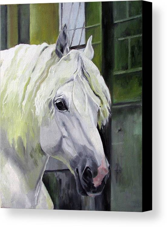 Horse Canvas Print featuring the painting Shadowfax by Nel Kwiatkowska