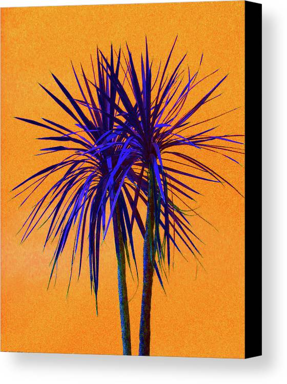 Palm Canvas Print featuring the photograph Silhouette On Orange by Margaret Saheed