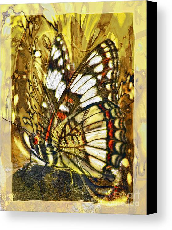 Butterfly Canvas Print featuring the digital art Stained Glass Butterfly by Chuck Brittenham
