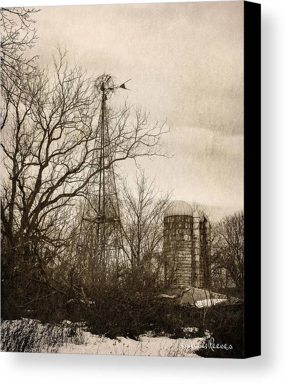 Windmill Canvas Print featuring the photograph Tangled by Louise Reeves