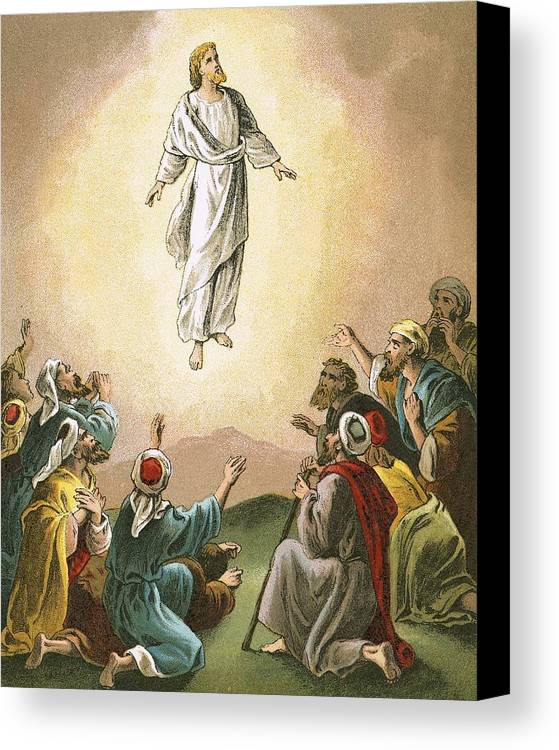 Bible; Ascension; Jesus; Christ; Heaven; Verse Canvas Print featuring the painting The Ascension by English School
