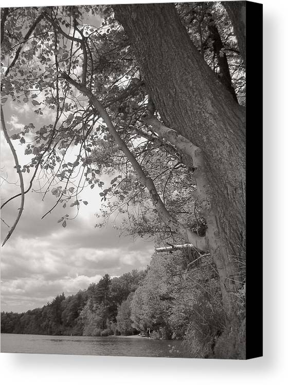 Walden Pond Canvas Print featuring the photograph Walden Pond by Heather Weikel
