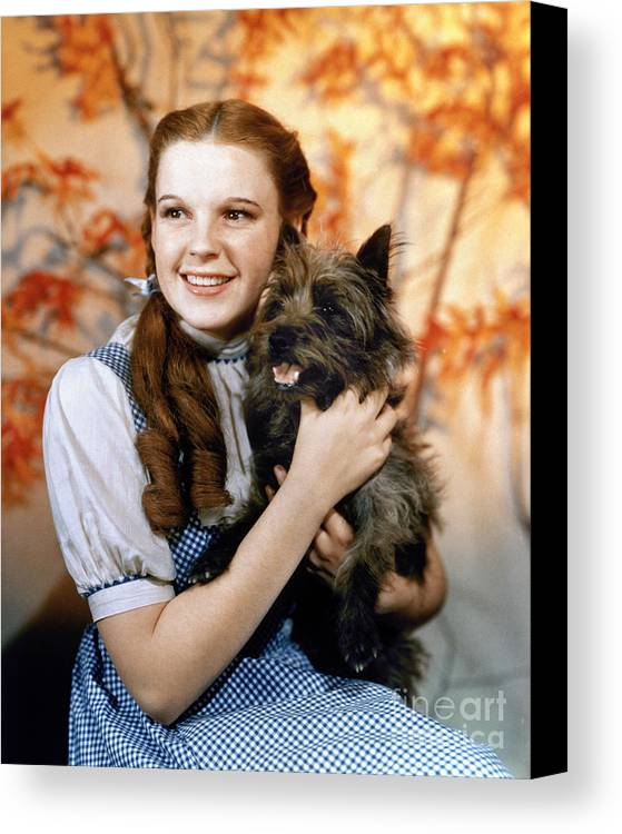 1939 Canvas Print featuring the photograph Wizard Of Oz, 1939 by Granger