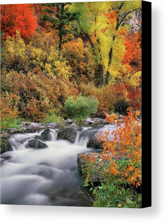 Idaho Scenics Canvas Print featuring the photograph Autumn Splendor by Leland D Howard