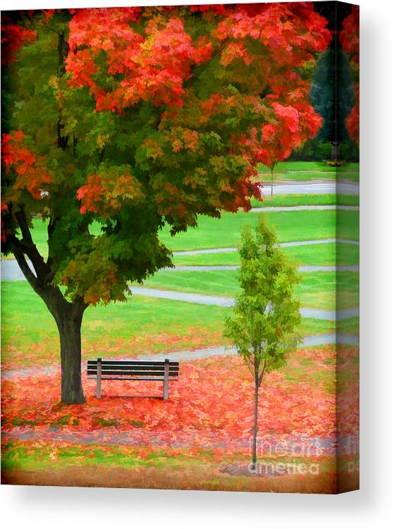 Fall Canvas Print featuring the photograph Changing Color by Jayne Carney