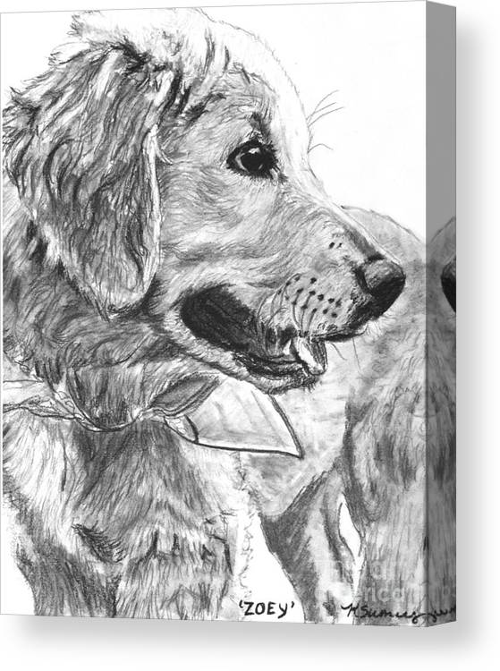 golden retriever puppy in profile canvas print canvas art by kate