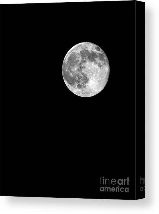 Supermoon July 12 2014 Canvas Print featuring the photograph Supermoon July 12 2014 by Jemmy Archer