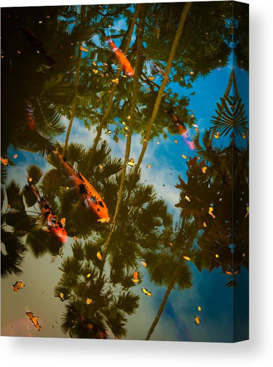 Asian Canvas Print featuring the photograph Fish In The Sky by Marion Wear