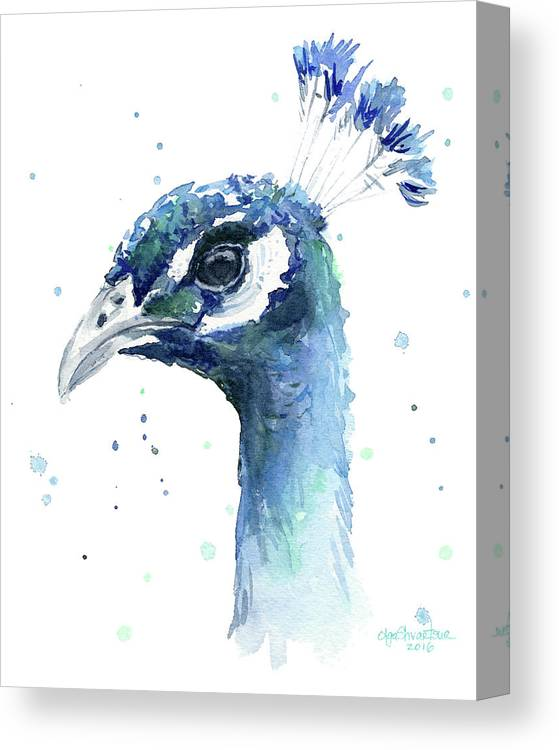 Peacock Canvas Print featuring the painting Peacock Watercolor by Olga Shvartsur