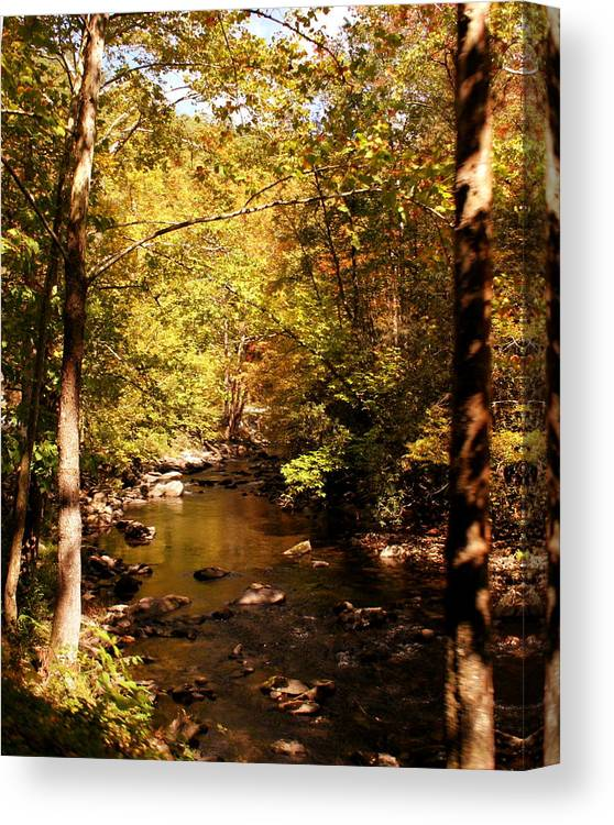 Creek Canvas Print featuring the photograph Autumn Creek by Kirby Larpenter