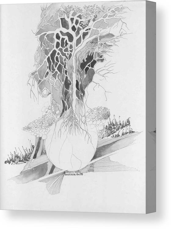 Surreal Canvas Print featuring the drawing Ball And Tree by Padamvir Singh