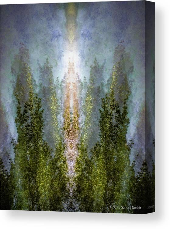 Mist Canvas Print featuring the digital art Radiance Rising by Sandra Nesbit
