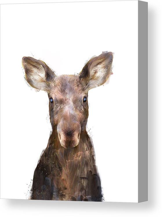 Moose Canvas Print featuring the painting Little Moose by Amy Hamilton