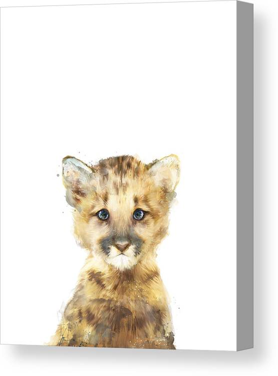 Mountain Lion Canvas Print featuring the painting Little Mountain Lion by Amy Hamilton