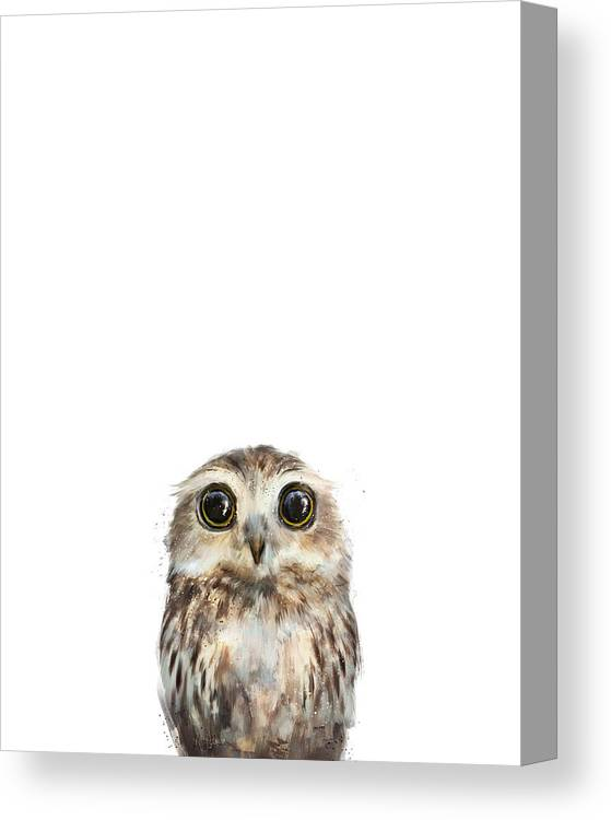 Owl Canvas Print featuring the painting Little Owl by Amy Hamilton