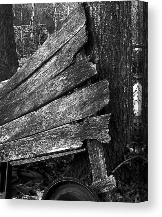 Ansel Adams Canvas Print featuring the photograph Nextdoorolddoor by Curtis J Neeley Jr