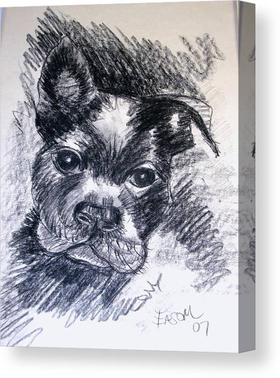 Dog Canvas Print featuring the drawing Pepper by Scott Easom