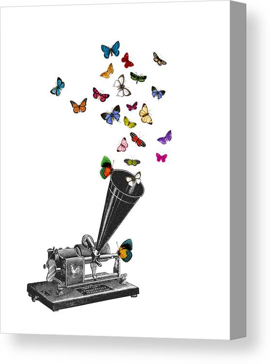 Phonograph Canvas Print featuring the digital art Phonograph And Butterflies Print by Madame Memento