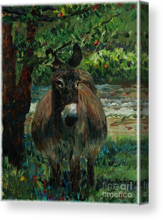 Donkey Canvas Print featuring the painting Provence Donkey by Nadine Rippelmeyer