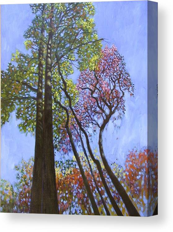 Fall Trees Highlighted By The Sun Canvas Print featuring the painting Sunlight On Upper Branches by John Lautermilch