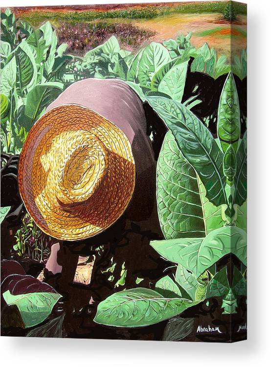 Tobacco Canvas Print featuring the painting Tobacco Picker by Jose Manuel Abraham
