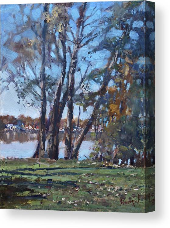 Trees Canvas Print featuring the painting Trees By The River by Ylli Haruni