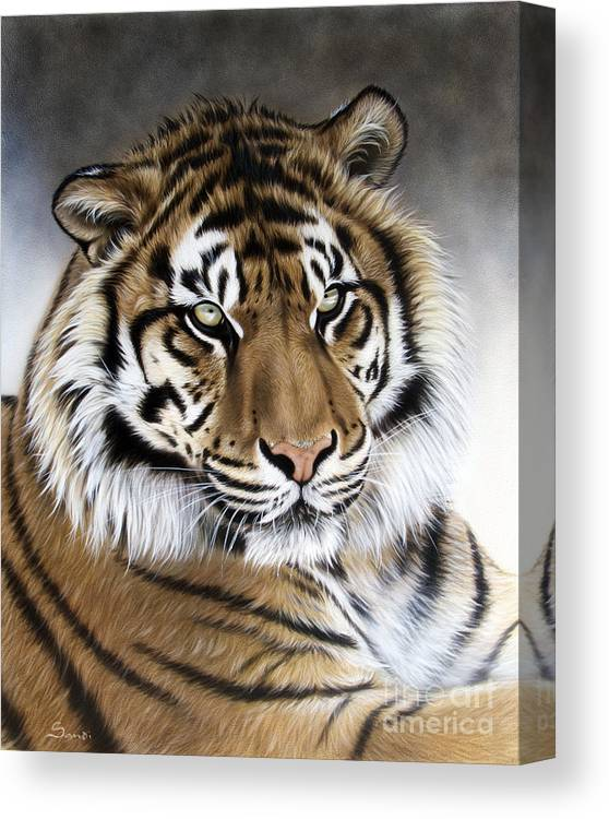 Tiger Canvas Print featuring the painting ZEN by Sandi Baker