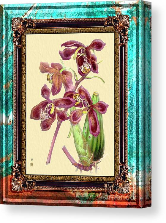Marble Canvas Print featuring the mixed media Vintage Orchid Antique Design Marble Caribbean-blue by Baptiste Posters