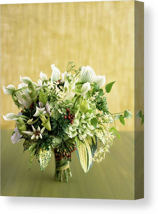 Lily Family Canvas Print featuring the photograph Green Bouquet by Lisa Hubbard