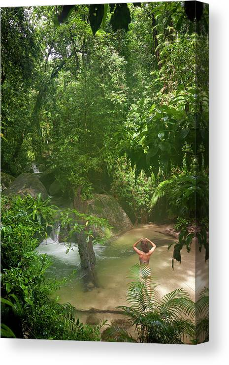 Scenics Canvas Print featuring the photograph Mossman Gorge Daintree National Park by Peter Adams