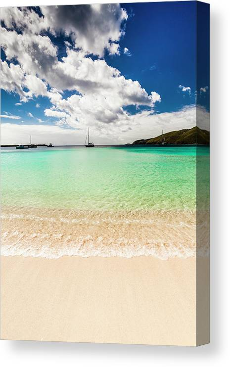 Tropical Tree Canvas Print featuring the photograph Caribbean Beach by Guvendemir