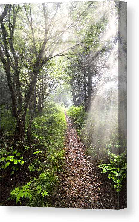 American Canvas Print featuring the photograph Appalachian Trail by Debra and Dave Vanderlaan
