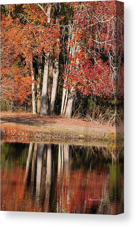 Autumn Canvas Print featuring the photograph Autumn Essence by Suzanne Gaff