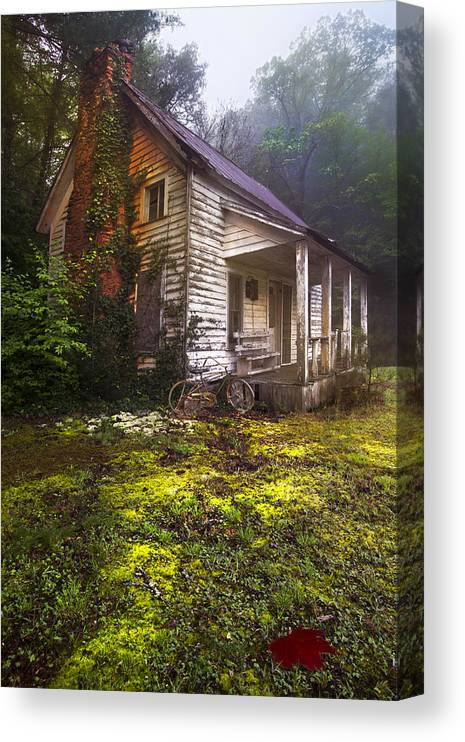 In Canvas Print featuring the photograph Childhood Dreams by Debra and Dave Vanderlaan