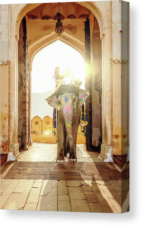 Working Animal Canvas Print featuring the photograph Elephant At Amber Palace Jaipur,india by Mlenny
