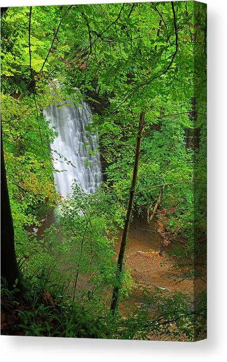 Scenics Canvas Print featuring the photograph Falling Foss, North York Moors National by Louise Heusinkveld