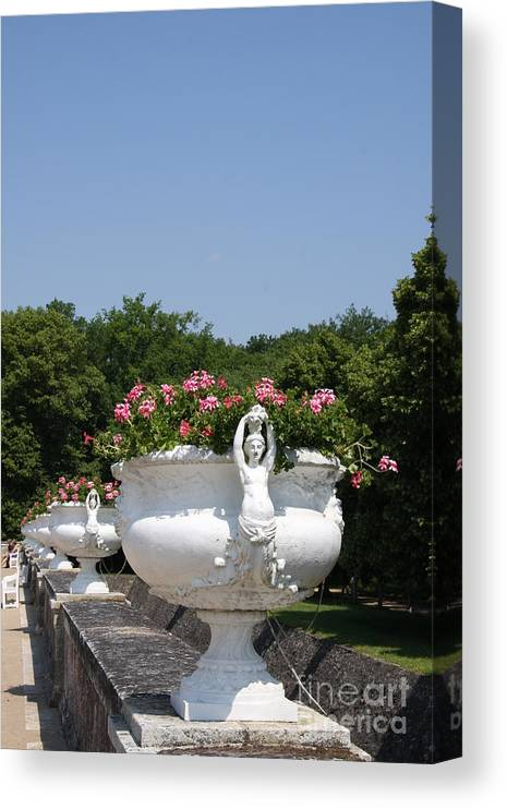 Basin Canvas Print featuring the photograph Flowerpots In A Row - Chateau Chenonceau by Christiane Schulze Art And Photography